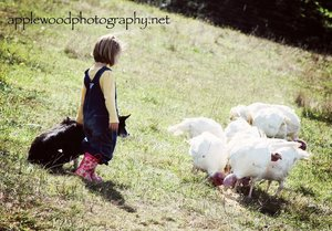 KaiLey and Molly checking out the Turkeys