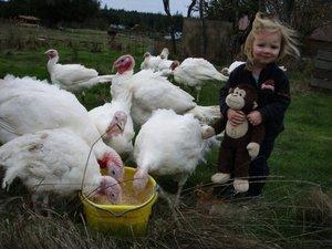 KaiLey and Ooh Ooh Feeding the Turkeys Fall '09